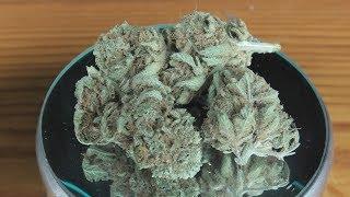 Ghost Train Haze #1 Marijuana Monday by Urban Grower