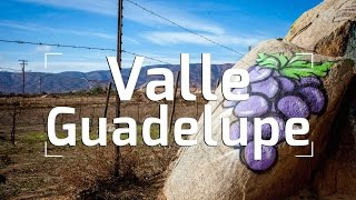 An Introduction to Valle de Guadalupe