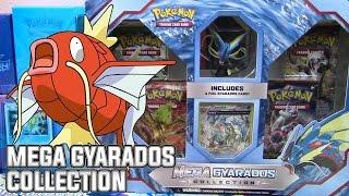 Pokémon Cards - Mega Gyarados Collection Box Opening! by The Pokémon Evolutionaries