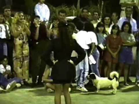 Moipora Gincana 1993 Colegio Estadual José Marcelino Parte  3
