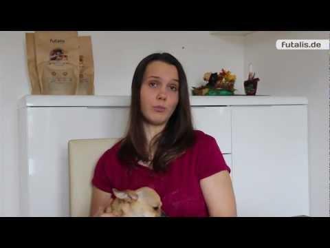 Testbericht zu futalis individuellem Hundefutter