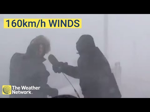 WATCH: Canadian Reporter Gets Blown Away By Crazy Storm