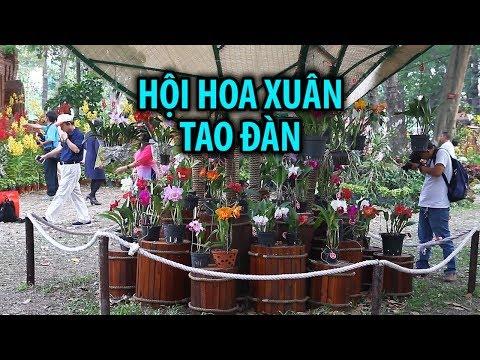 Hàng trăm loài hoa lan khoe sắc ở Hội hoa xuân Tao Đàn