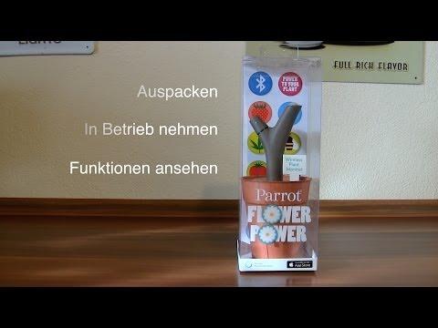 Kurztest: Parrot Flower Power Pflanzensensor für das iPhone im Hands-On vorgestellt