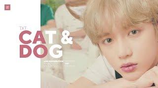 Video TXT - Cat & Dog Line Distribution (Color Coded) MP3, 3GP, MP4, WEBM, AVI, FLV Juni 2019