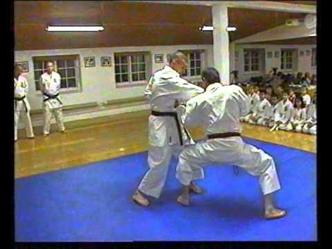 More bunkai with Ingo De Jong Hanshi (8.DAN)