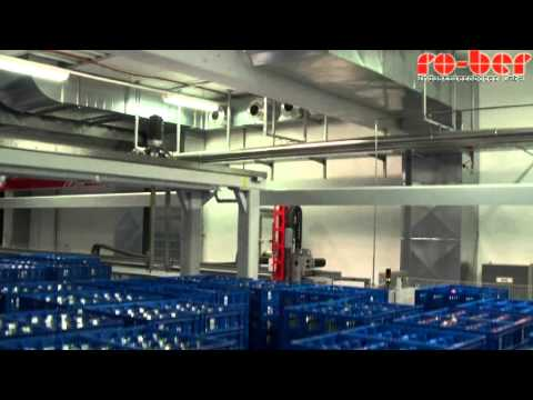 Tote Store Using Gantry Robot