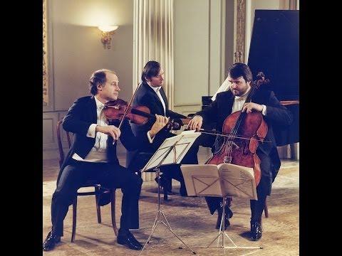 Mozart trios K.548, K.564, K.496 (видео)