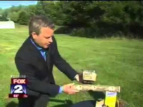 Fun, Easy Ways to Attract Birds to Your Backyard – Fox 2 (Detroit, MI)