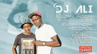 DJ ALI - PLUGIN RIDDIM...