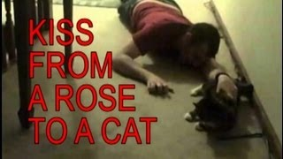 Drunk Guy Sings 'Kiss From A Rose' To His Cat