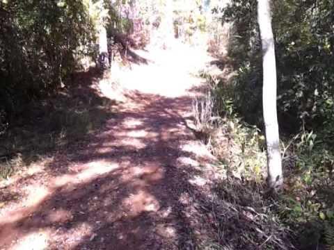 154 acres Ashland, AL
