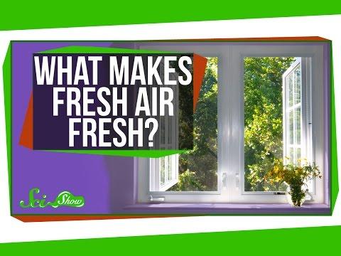 What Makes Fresh Air Fresh