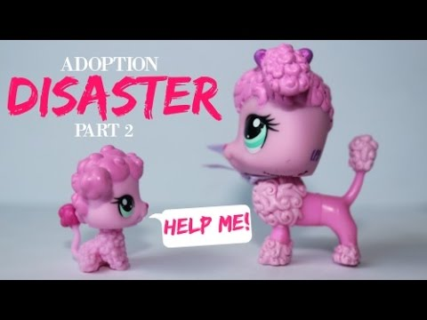 Adoption Disaster! EP 2:  The Mistake
