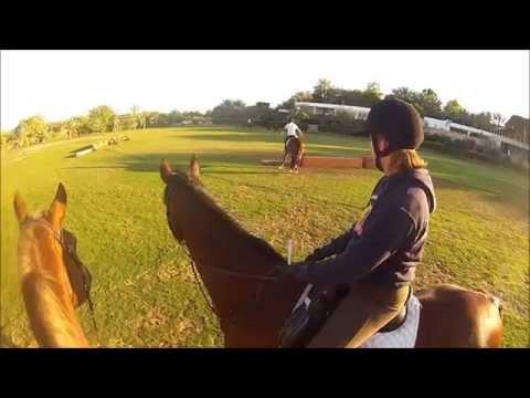 Horse riding lesson Helmet Cam (GoPro) -Desert Palm Equestrian Club Dubai