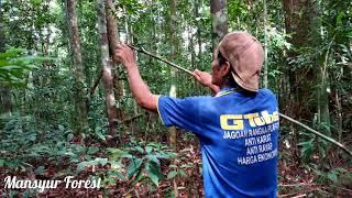 Video Cara Memasang Jerat Di hutan MP3, 3GP, MP4, WEBM, AVI, FLV Oktober 2018