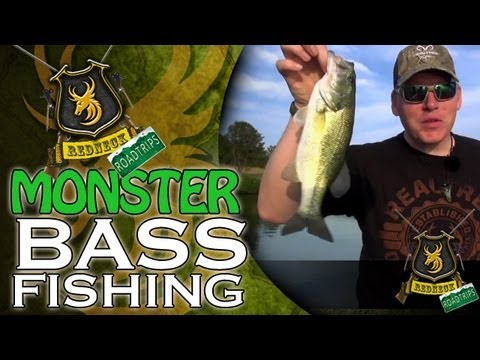 MONSTER Bass Fishing