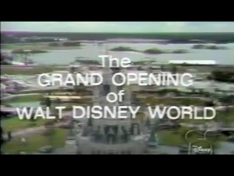 disney - Broadcasting on the Wonderful World of Disney, it is the grand opening television special of Walt Disney World in 1971. Julie Andrews hosts this celebration ...