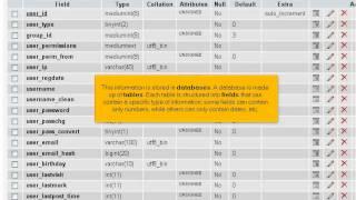 NextGen Web Hosting Tutorials: What Is A MySQL Database?