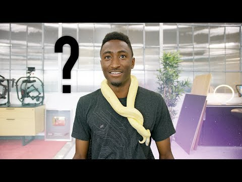 Snakes in the Studio? Ask MKBHD V19!