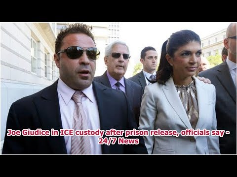 Joe Giudice in ICE custody after prison release, officials say -24/7 News