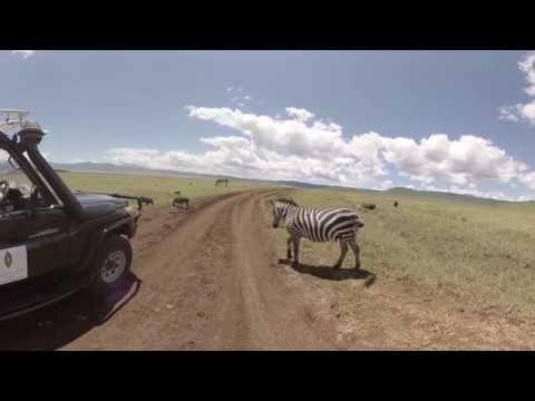 360 Video of Sanctuary Ngorongoro Crater Camp, Tanzania
