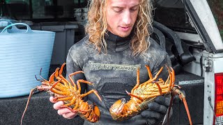 LOBSTER DIVING - How To Catch Lobsters + Garlic Butter Crayfish Catch and Cook