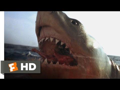 Jaws: The Revenge (3/8) Movie CLIP - You Got 'Im (1987) HD