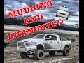 DIESEL TRUCKS MUDDING AND BURNOUTS!