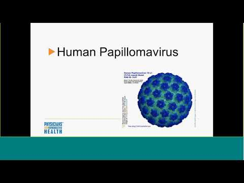 Vermont PREP - Learning About Human Papilloma Virus and Adolescents with Dr. Gibson