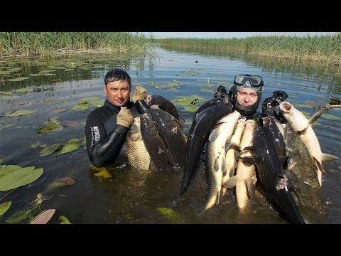 Подводная охота без цензуры spearfishing
