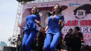 Video Goyangan Duo Serigala Bikin Penonton Ngiler MP3, 3GP, MP4, WEBM, AVI, FLV Juni 2017