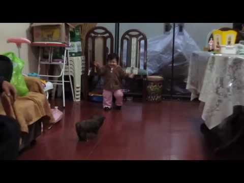 Marysole caminando :') (видео)
