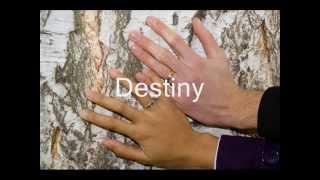 Video Selected Wedding Song MP3, 3GP, MP4, WEBM, AVI, FLV Juni 2018