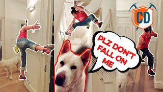 Don't Land On The Dog! Highball INDOOR Bouldering   Climbing Daily Ep.1666 by EpicTV Climbing Daily