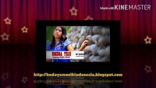 Lagu batak Mardua holong-Omega trio