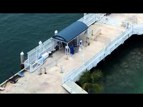 Key West Pier Runner
