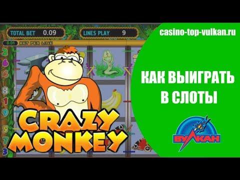 Крейзи манки игровые автоматы играть бесплатно депозит 100000