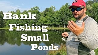 Video Bank Fishing - How to Fish Small Ponds in the Summer MP3, 3GP, MP4, WEBM, AVI, FLV Oktober 2018