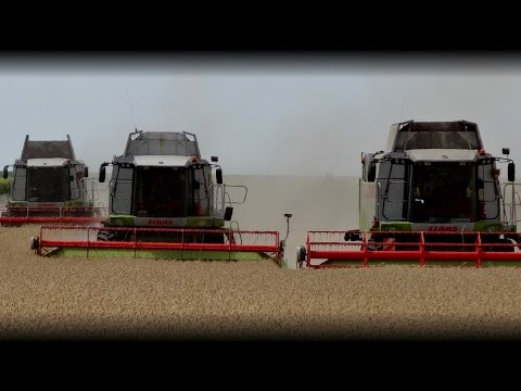 Superteam - Big Summer Harvest 2014