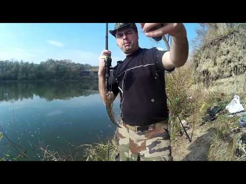 осенняя рыбалка в беларуси видео