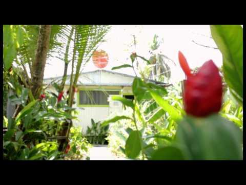 Video of Panama's Paradise Saigoncito's