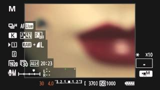 Canon EOS 5D Mark III On-Camera Tutorial - Basic Video Operation