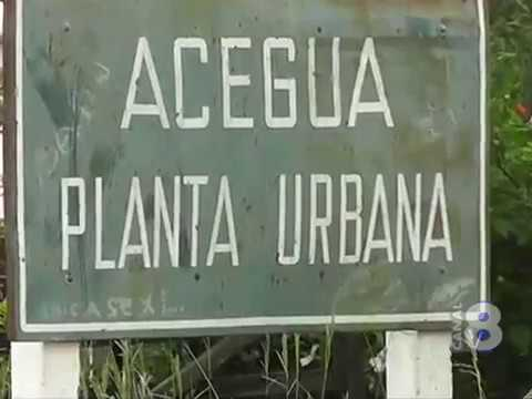 MIGRACIÓN DE ACEGUÁ URUGUAY RETORNÓ A SU ANTIGUO LOCAL POR REPRESALIAS A FUNCIONARIOS