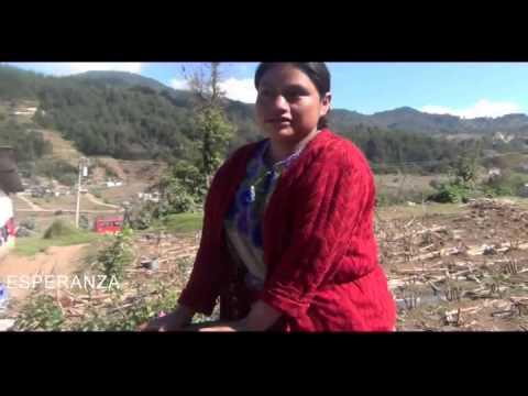 Beneficiarios Región Occidente Sistema de Extracción del Agua Pep