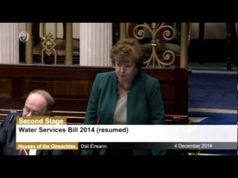 Catherine Murphy TD questions water meter installation contracts in the Dáil