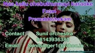 Naa Kallu Chebuthunnayi karaoke-Premabhishekam karaoke