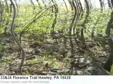 Phenomenal 92.00 Acre Lot In Hawley, Pa Is Listed At Just $1