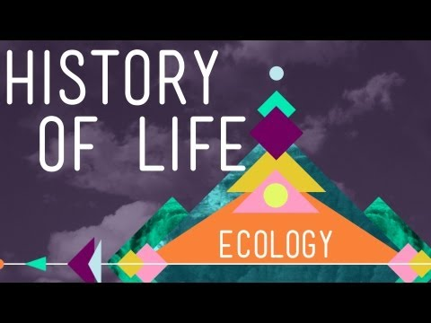The History of Life on Earth - Crash Course Ecology #1