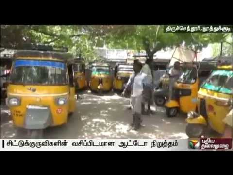Auto-drivers-grow-sparrows-in-their-stand-in-Thriuchendur